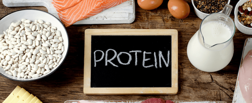 functions of protein