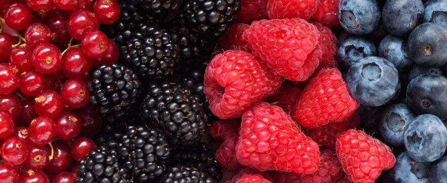 Why Berries Are Good For You? |Berries Health Benefits